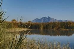 VIDEO: Shirin Su lagoon hosting migratory birds