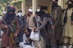 موافقت دولت کابل و طالبان برای ادامه آتش بس