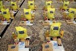۲۰ هزار بسته حمایتی میان نیازمندان در خوزستان توزیع می شود
