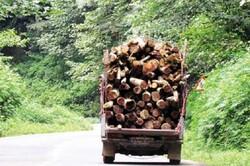 محموله چوب جنگلی قاچاق در لردگان توقیف شد