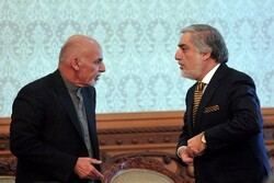 How did Afghan government reach an agreement? External pressure or internal consensus?
