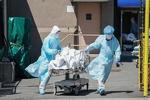 Global COVID-19 death toll nears 400,000