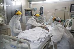 Coronavirus cases pass 10.5 million worldwide