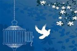 آزادی همه زندانیان مهریه و نفقه از زندان های هرمزگان