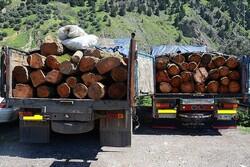 ۱۸ تن چوب قاچاق در سلطانیه کشف شد