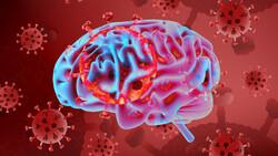 تغییر حالت روانی خطر مرگ بیماران کرونایی را افزایش می دهد