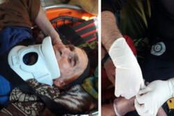 بانوی ۸۰ ساله از ارتفاعات طارم سفلی استان قزوین نجات یافت
