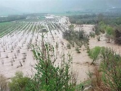 سیل و تگرگ ۱۰۰ میلیارد تومان به آذربایجان غربی خسارت زد