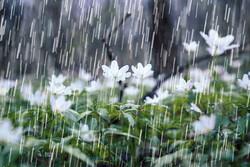 ۳۶۰ میلی متر بارش در زنجان ثبت شد