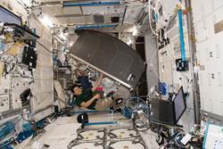 ناسا ۱۱ قفسه مخصوص به ایستگاه فضایی بین المللی فرستاد