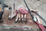 دستگیری دو شکارچی غیرمجاز/کشف یک رأس بز کوهی شکار شده