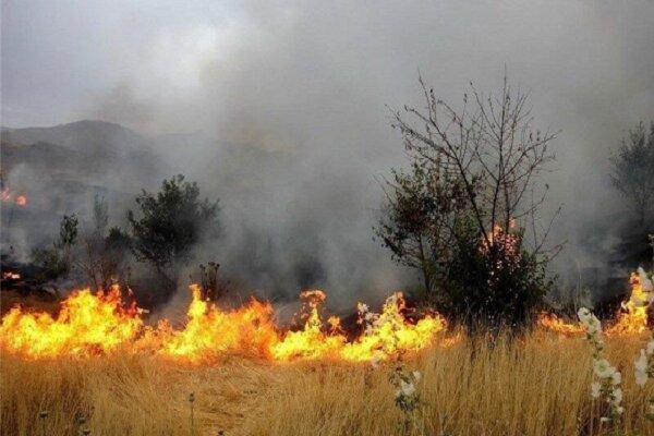 کارگروه مدیریت بحران حریق منابع طبیعی بروجرد تشکیل جلسه داد