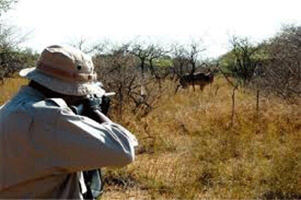 چرا سازمان حفاظت از محیط زیست از شکار حیات وحش دفاع میکند؟