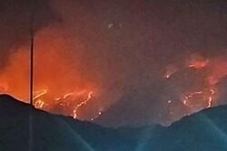 آتش سوزی گسترده جنگل های خاییز کهگیلویه را فرا گرفت