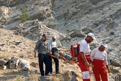 عملیات اطفای حریق جنگل های کهگیلویه شش مصدوم برجای گذاشت