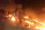 آتش سوزی جنگل های منطقه حفاظت شده خائیز مهار شد