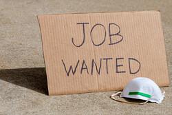 بیکاری، کرونا، بیمه بیکاری