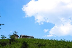 طبیعت ارتفاعات قله تریشوم ماسوله