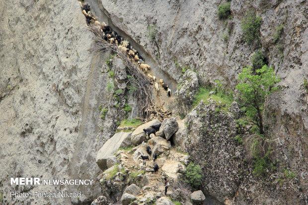 "Crossing ""Khoda Afarin"" bridge"