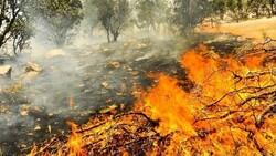 نقشه ماهوارهای مساحت سوخته ناشی از آتش سوزیهای خرداد