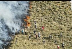 تهدید دوباره آتش بر پیکر زخم خورده خائیز کهگیلویه