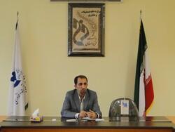 مشارکت ۷۲ درصدی دانشجویان فنی و حرفهای بوشهر در آموزش مجازی