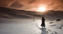 فیلم کوتاه «ردپای درختان» در شیراز تولید شد