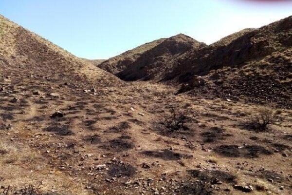 حریق در ارتفاعات ظفر آباد به طور کامل مهار شد