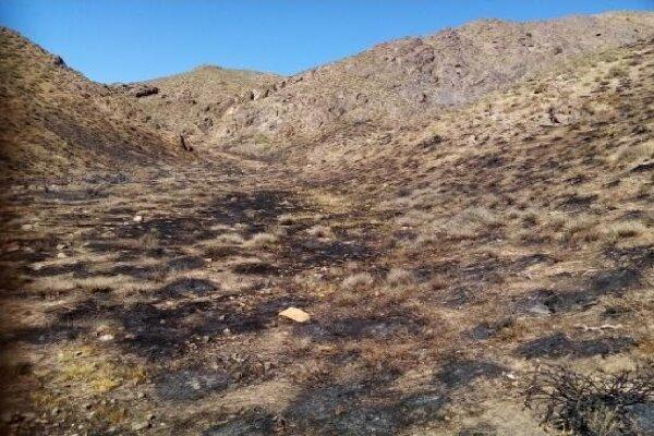 آتش سوزی عرصه های منابع طبیعی شهرستان آباده مهار شد