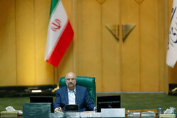 Iran not to let IAEA breach legal frameworks, violate its rights: parl. speaker