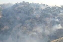 عامل آتش سوزی منطقه «تنگه قیر» چرداول دستگیر شد