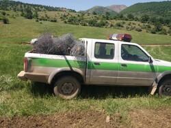 ۷۳۰ تماس با سامانه ۱۵۰۴ منابع طبیعی استان سمنان گرفته شد