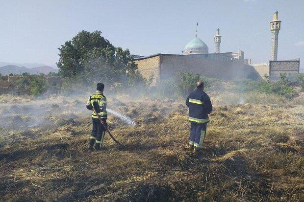 آتشسوزی مزرعه گندم در سمنان مهار شد