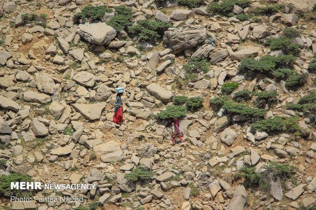 آیین کلنگ زنی پروژه آب رسانی مناطق عشایری بازفت