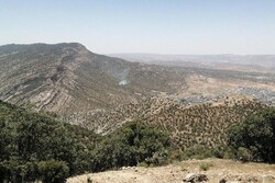 حریق در بخشی از کوه «شلم» ایلام/ اعزام نیروها برای مهار آتش