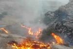 اراضی ملی چاه نفت جهرم دچار حریق شد