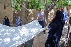 İran'da dut böyle toplanır