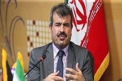Human traffickers responsible for incident in Yazd province: ambs.