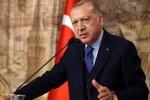 فرستاده ویژه «اردوغان» وارد «بیروت» شد