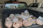 محموله ۴۱ کیلوگرمی گوشت غیرمجاز در قروه کشف و ضبط شد