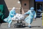 دنیا بھر میں کورونا وائرس سے ہلاکتوں کی تعداد 7 لاکھ 34 ہزار سے زائد ہوگئی