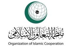 نماینده ایران به عضویت کمیسیون مستقل و دائم حقوقی بشر اسلامی برگزیده شد
