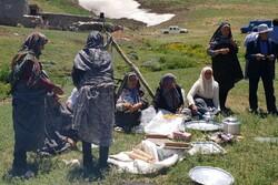 برق عشایر با کمک پنل خورشیدی تأمین شود