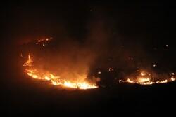 آتش سوزی در مراتع بهارستان شهرستان جم تحت کنترل است