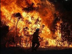 ئاگری دارستانەکانی پاوە کوژێندرایەوە