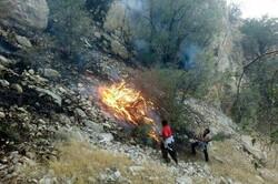 مهار آتش سوزی منطقه جنگلی قلات شهرستان سرچهان