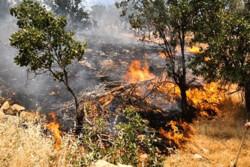 ۱.۵ هکتار از اراضی مستثنیات «امین آباد» فیروزکوه در آتش سوخت