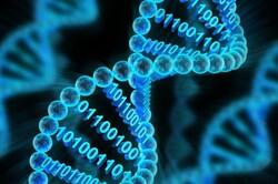 چینیها بزرگترین پایگاه داده ژنتیک جهان را تاسیس میکنند