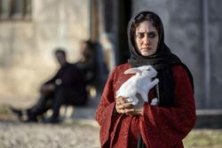 آیدا پناهنده برای «تیتی» مجوز گرفت/ موافقت با اکران «دشمنان» برزگر