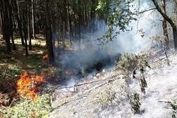 آتش سوزی در فضای سبز و مزارع کشاورزی شهرستان قروه افزایش یافت
